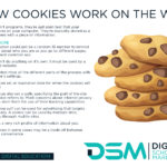 DSM Digital School of Marketing - cookie