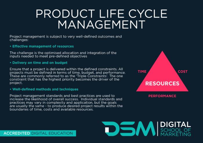 DSM Digital School of Marketing - product life cycle management