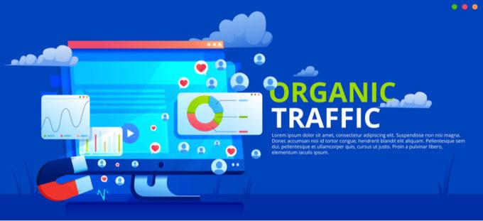 DSM Digital School of Marketing - organic traffic